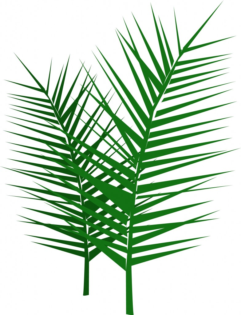 Leafy-Palm-Branches-1