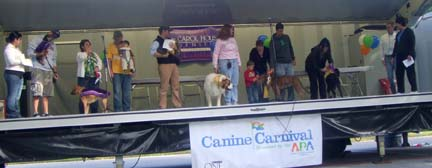 canine carnival